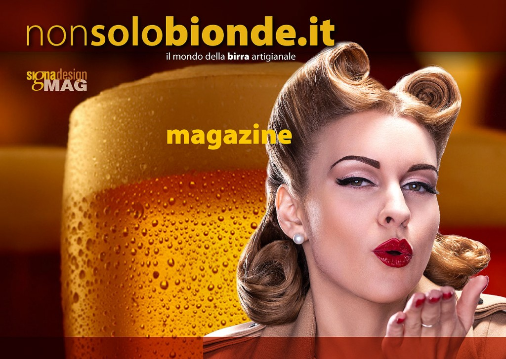 nonsolobionde.it